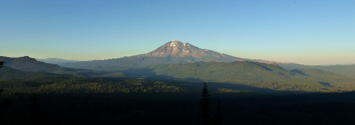 Mt Adams from Indian Heaven Wilderness along PCT