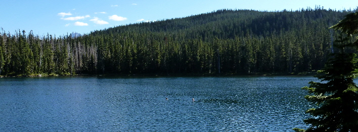 Next Adventure Olallie Backpack lake swimming