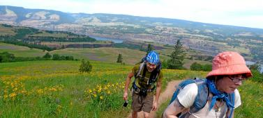 Hike up McCall Point Trail Wildflowers in Columbia Gorge