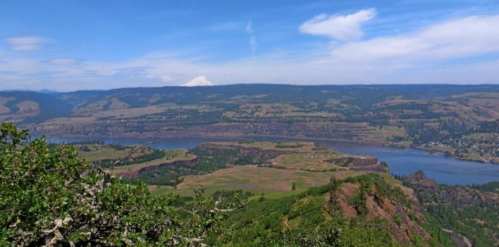 Mount Adams across Columbia River from McCall Point