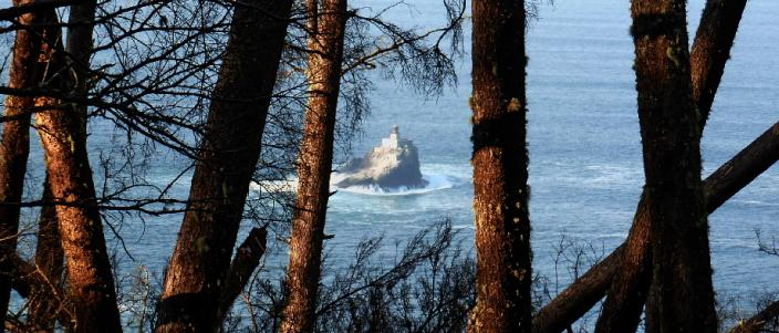 Terrible Tilly Lighthouse view through trees on Oregon Coast Trail