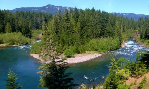 Clackamas River cliff-top view