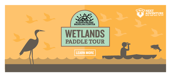 wetlands tour at scappoose bay