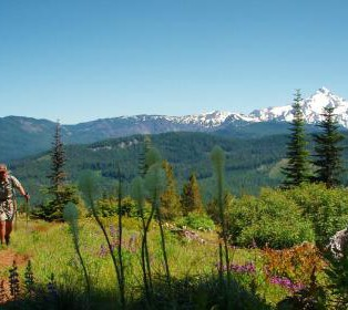 Trip Report: Intro to Backpacking on Rho Ridge