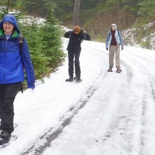 Ho! Ho! Ho! Let It Snow!