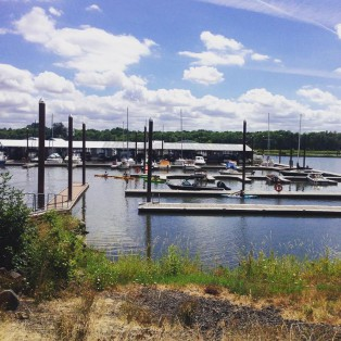 Trip Report: Paddle boarding in Scappoose Bay