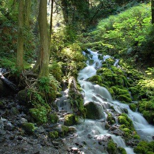Trip Report: Wakheena Falls Loop