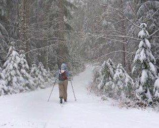TRIP REPORT: XC Skiing Mt. Hood