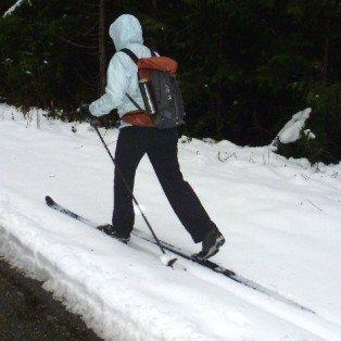 TRIP REPORT: Fresh Tracks at 3000 Feet