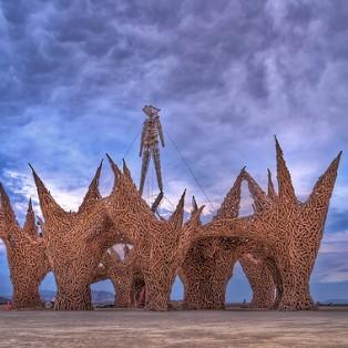 Burning Man 2014 Preparation