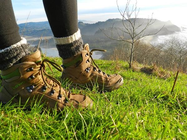 Lowa Renegade GTX Mid Hiking Boots Review   Nextadventure  697cd766e616