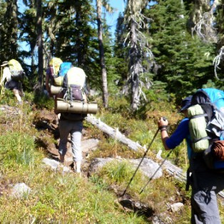 Wild on the Pacific Crest Trail