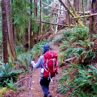 Backpacking the Oregon Coast Trail: Tillamook Head