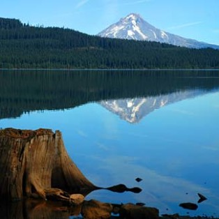 Trip Report: Timothy Lake