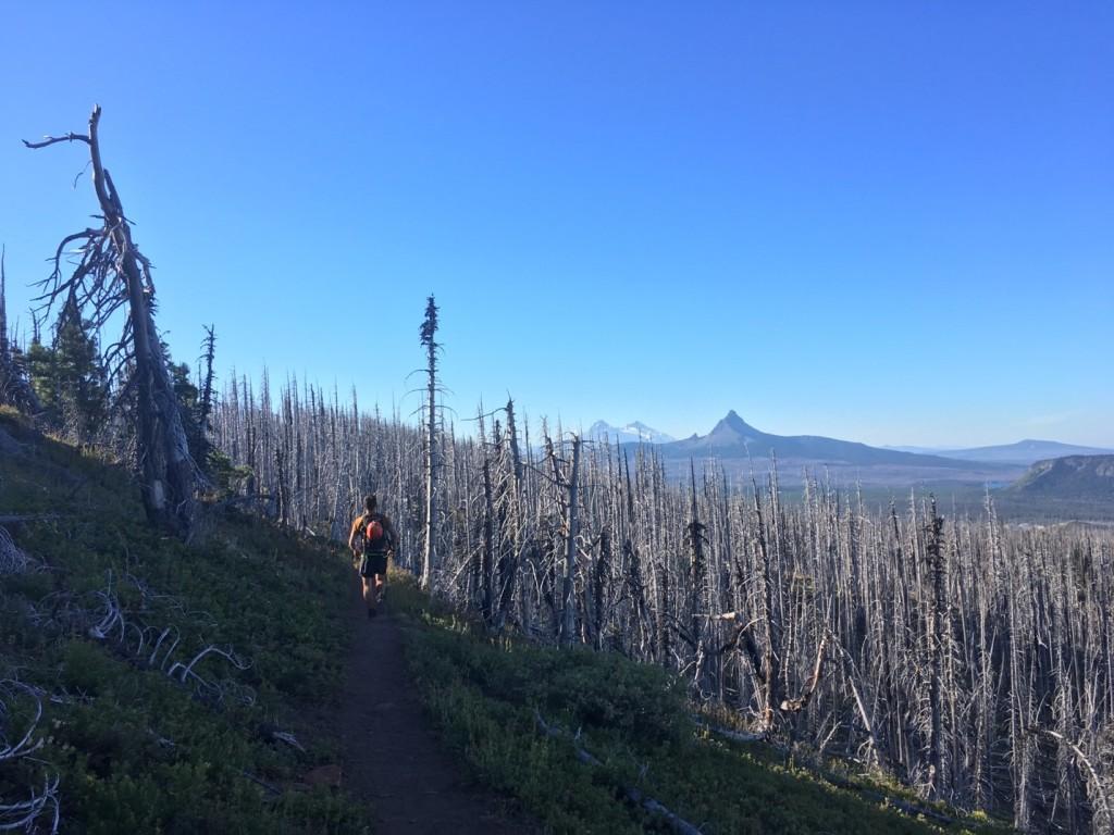 Three Fingered Jack & Mount Washington