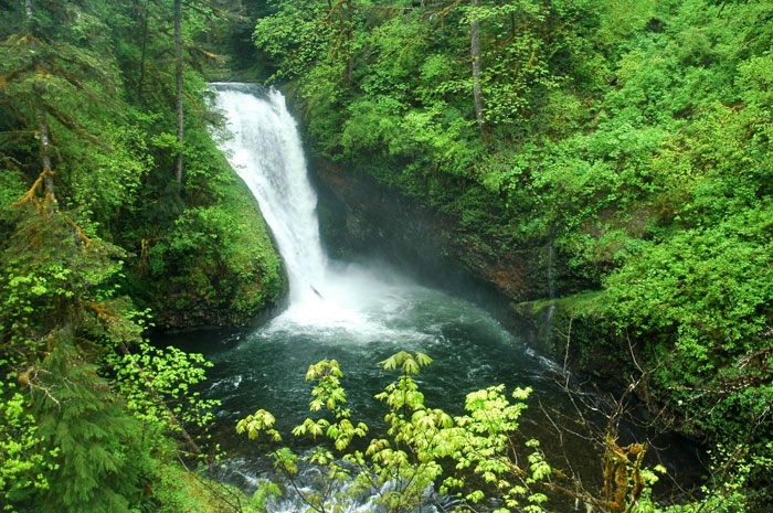 New Hikes in Oregon