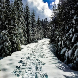 Trip Report: Winter Camping with the NA Outdoor School