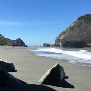 Trip Report: California Redwoods & Lost Rocks