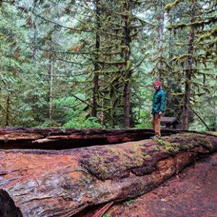 Trip Report: Bagby Hot Springs