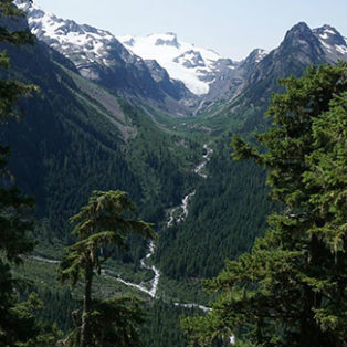 Trip Report: Olympic National Park - Hoh Rainforest to Blue Glacier
