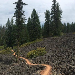Thru-Hiking Oregon on the PCT: Section 2 - Ashland  to Sky Lakes Wilderness