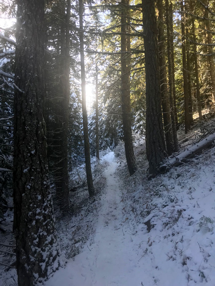 Trip Report: Tilly Jane Snowshoe - Mt Hood / Nextadventure   Next ...