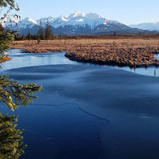 Trip Report: Cordova, Alaska