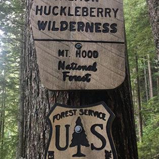 Trip Report: Boulder Ridge Trail in the Salmon-Huckleberry Wilderness