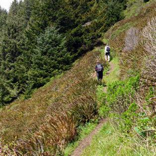Trip Report: Oswald West State Park, Oregon Coast