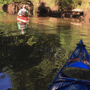 Trip Report: Exploring Scappoose Bay by Kayak