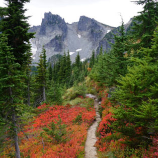 Trip Report: Backpacking The Northern Loop Trail, Mt. Rainier National Park