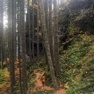 Trip Report: Castle Canyon Trail - Rhododendron, Oregon
