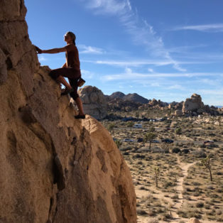 Trip Report: Joshua Tree National Park
