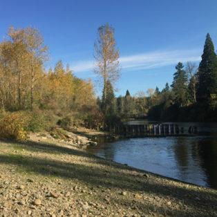 Trip Report: Riverfront Park, Clackamas Oregon