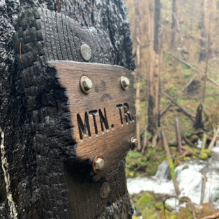 Trip Report: Hiking Wahkeena Falls Loop After the Columbia Gorge Fire