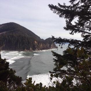 Trip Report: Cape Falcon Trail - Hiking the Oregon Coast