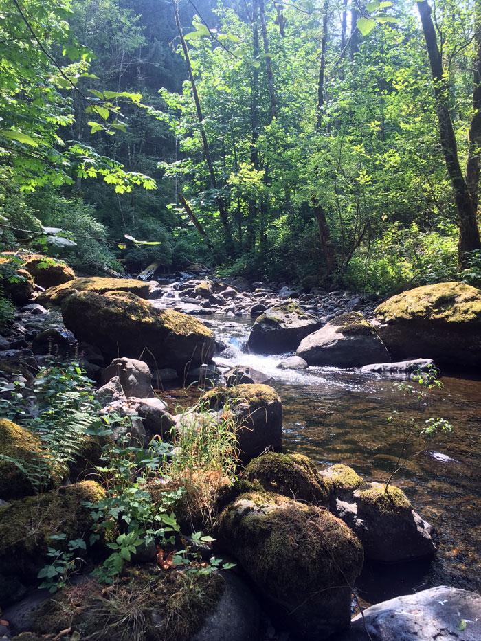 North Fork Clackamas River