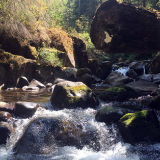Trip Report: Exploring the North Fork of the Clackamas River