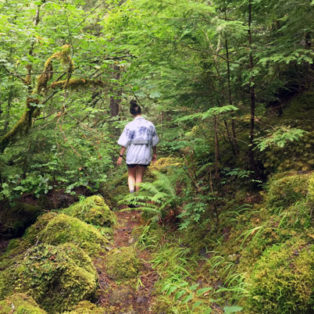 Trip Report: Roaring River Wilderness, Dry Ridge Trail