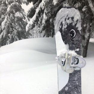 Gear Review: 2020 Lib Tech Travis Rice Orca Snowboard