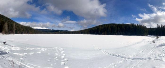 Cross Country Skiing Trillium Lake Mt Hood