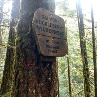 Trip Report: Hiking the Salmon River Trail in the Salmon-Huckleberry Wilderness
